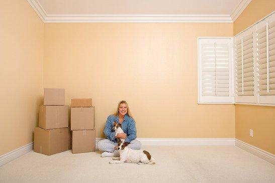 Le déménagement et le chien, comment le préparer sans stress ?