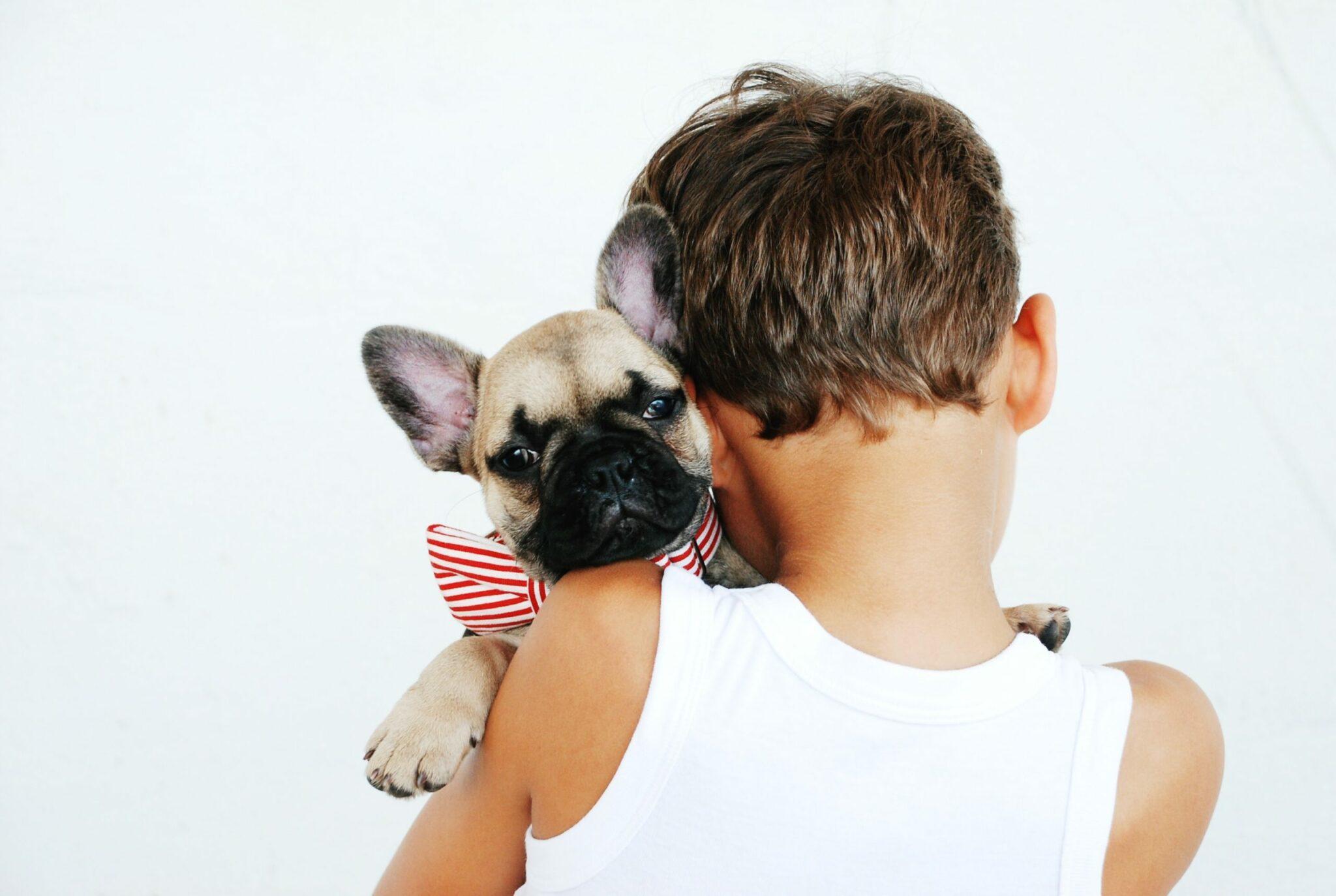 Petit, je me suis passionné pour les chiens ! Voici toute l'histoire.