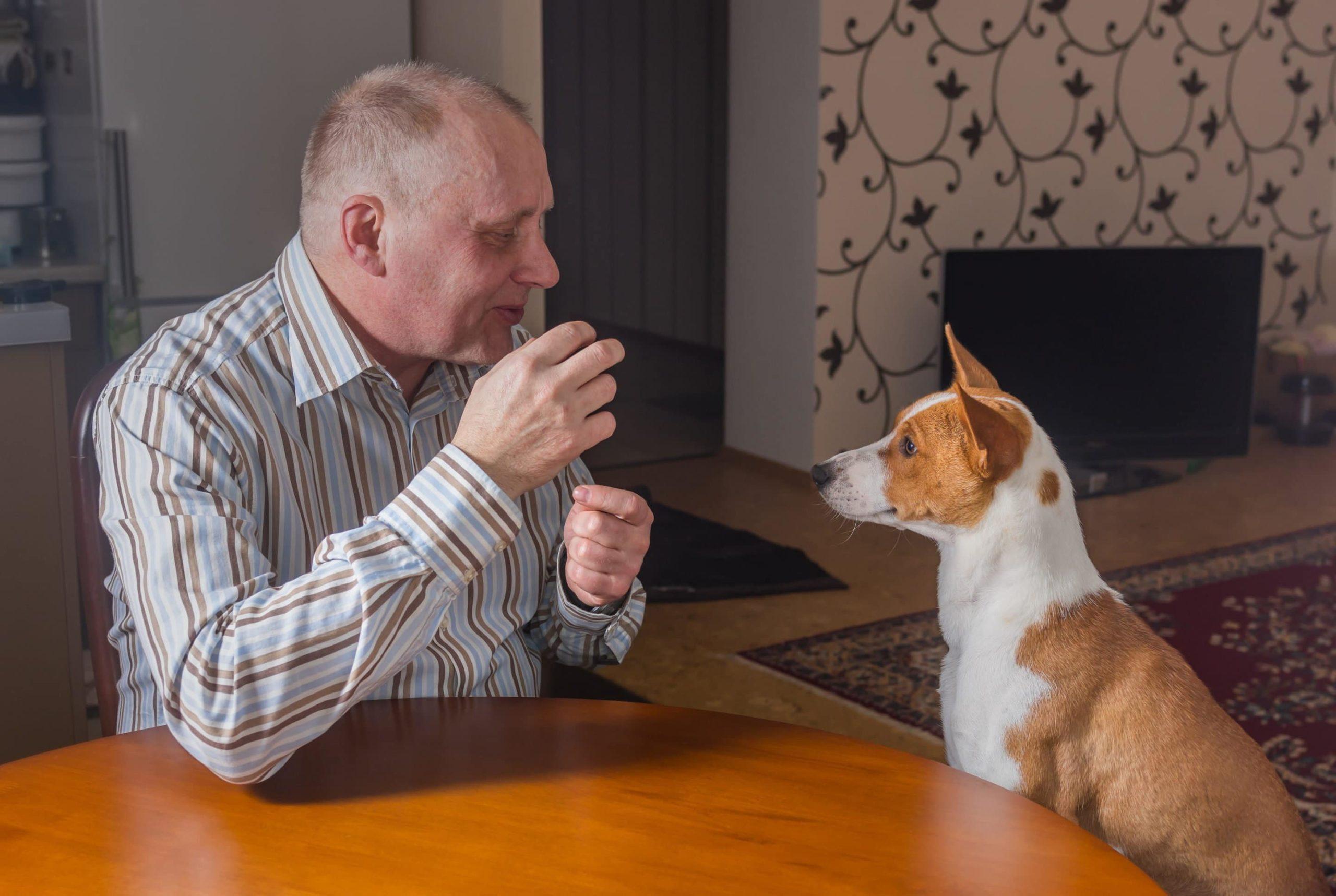 parler à son chien