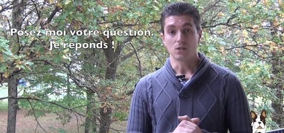 [Vidéo] Posez moi vos questions sur l'éducation de votre chien, je réponds !