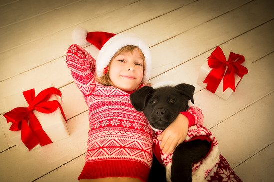 Child and dog in Christmas