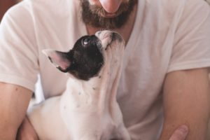 gagner la confiance de son chien