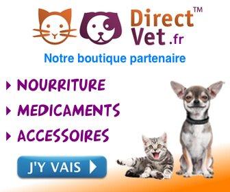 médicaments pour chiens