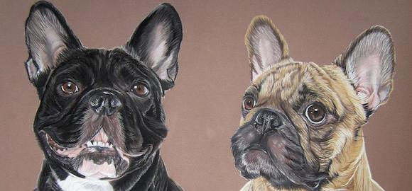 Interview de Cindy Barillet, Artiste Animalier et Portraitiste