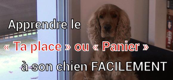 [Vidéo] Apprendre le «ta place» ou «panier» à son chien FACILEMENT