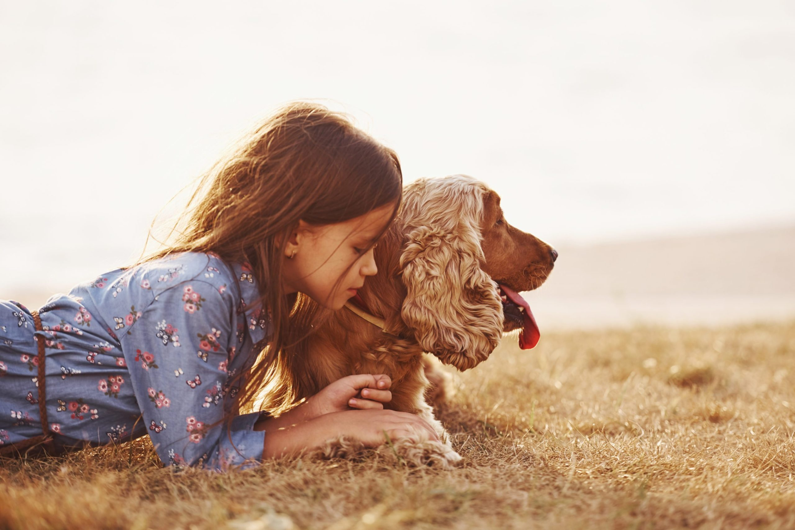 «Heureux et Propre» La nouvelle façon d'apprendre la propreté à son chien !