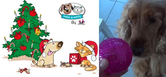 Présentation de la Max & Kitty Box de Décembre 2015