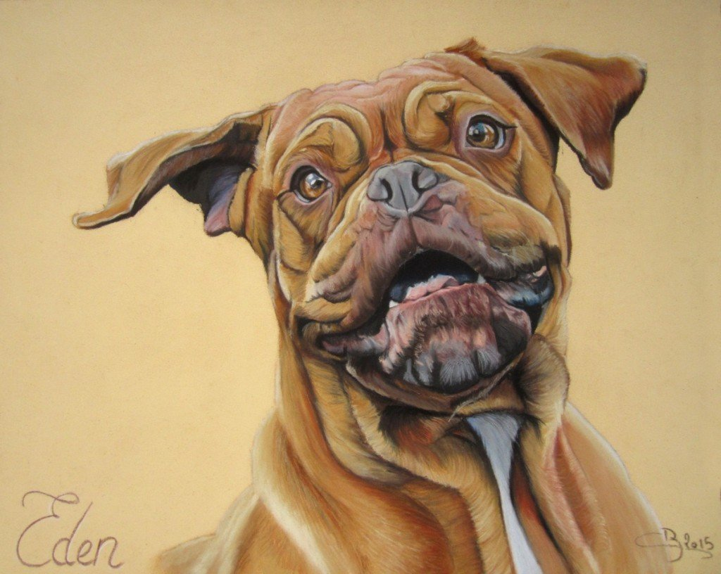 dogue de bordeaux pastel