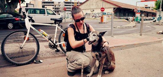 Médiation animalesociale: Quand le chien devient levier d'insertion