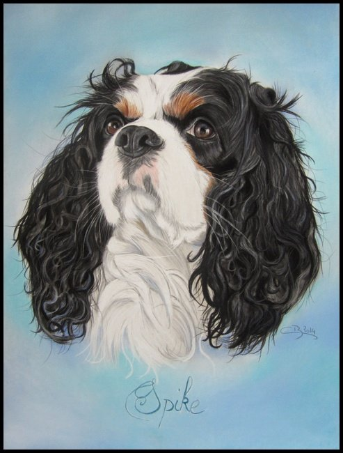 cavalier king charles aux pastels