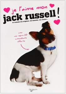 je l'aime mon jack russell