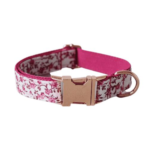 collier pour chien rose