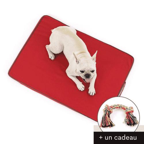 lit orthopédique chien rouge