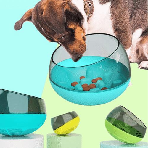 bol chien anti-glouton